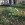 altersuedfriedhofmuenchen